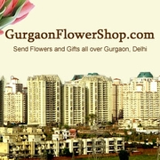 Flowers to Gurgaon Cakes to Gurgaon Gifts to Gurgaon